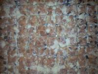 brandýské máslové koláče necukrované